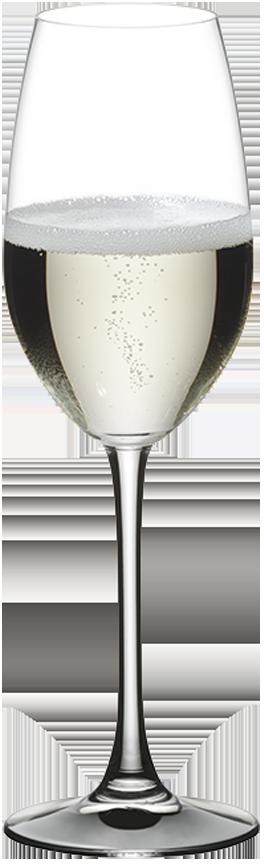 RIEDEL Aluguer Champagne 446/48